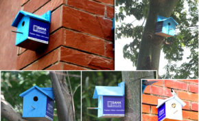 Birdhouse by SAHA Group because environment flourishes by being shared!